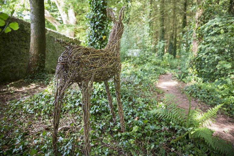 Willow deer web
