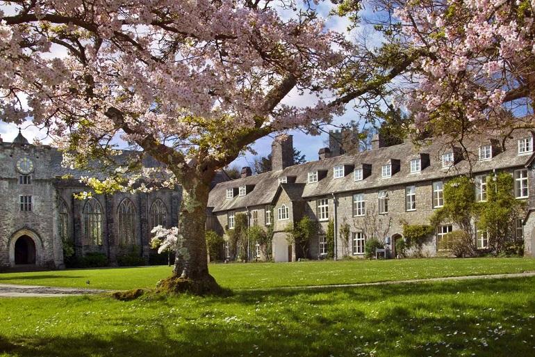 blossom courtyard web