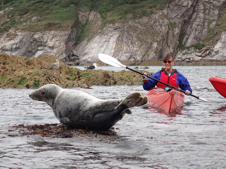 sea kayak web2