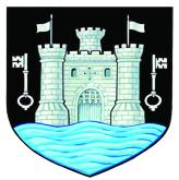 Town Council Crest copy