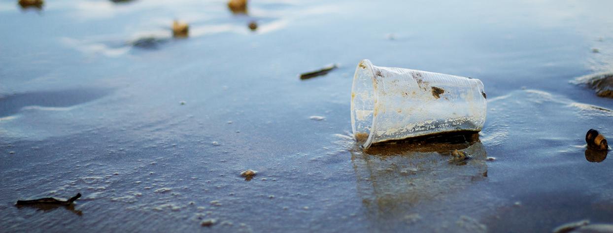 plastic mug on beach FRN3GWE