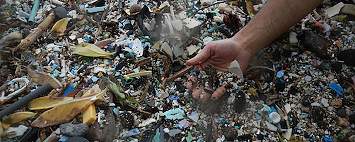 Plastic Debris 1