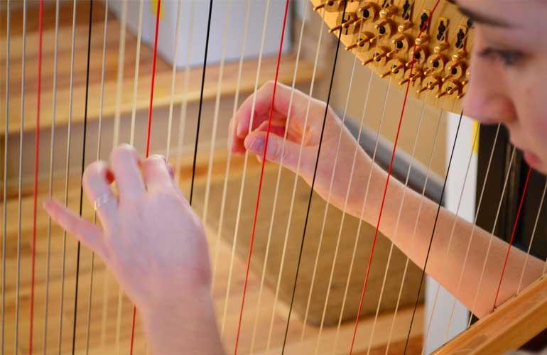devon harp
